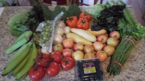 SAVING ON PRODUCE – BOUNTIFUL BASKETS PART TWO
