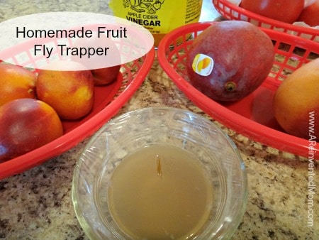 Homemade Fruit Fly Trapper | A Reinvented Mom